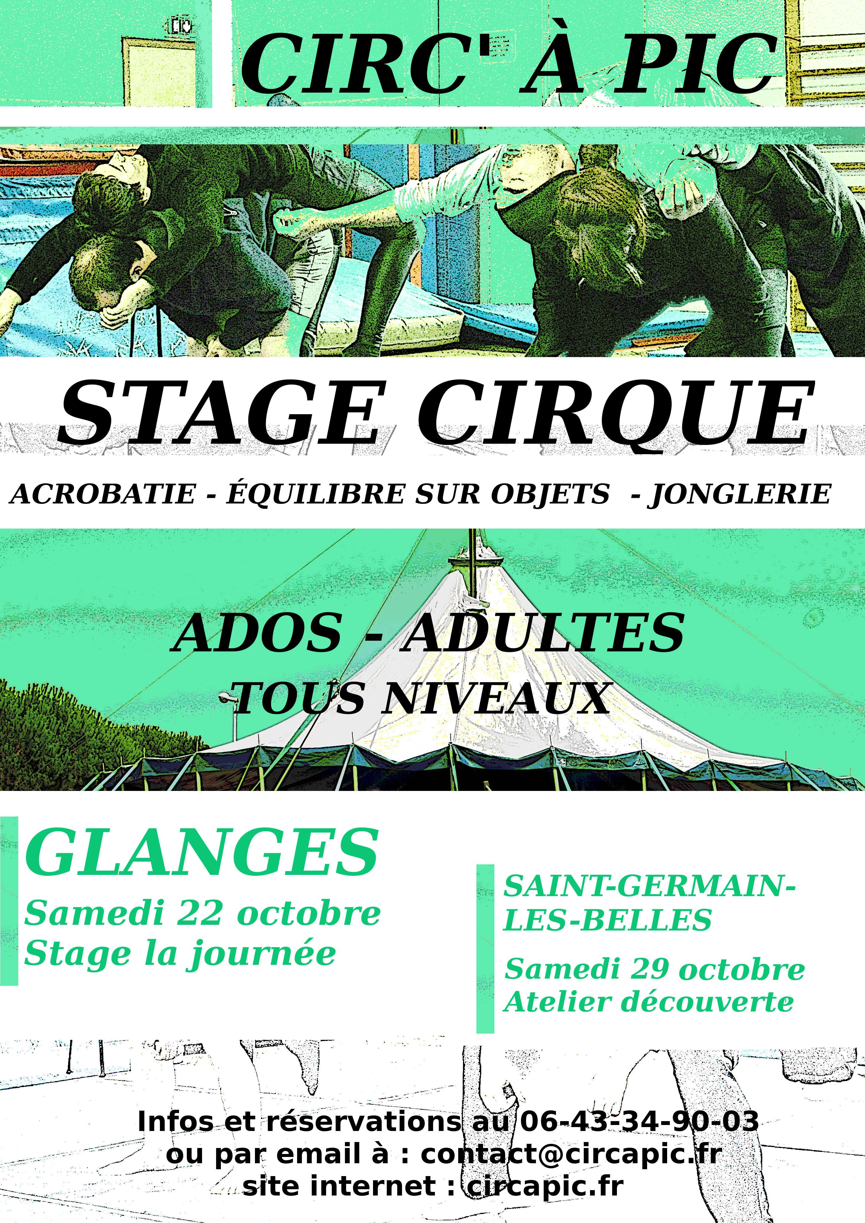 affiche-circ-a-pic-stage-de-cirque-2016